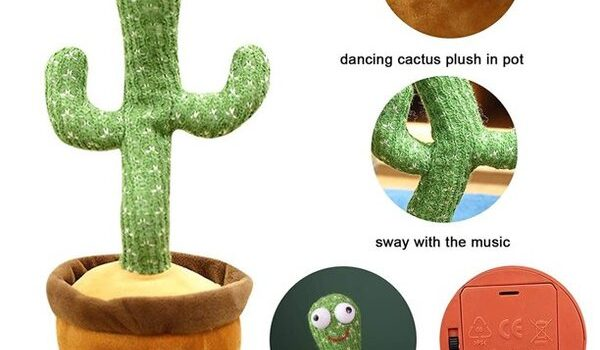 کاکتوس رقصنده